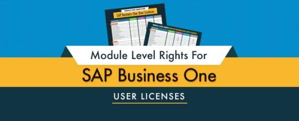 Direitos a licenças de usuário do SAP Business One