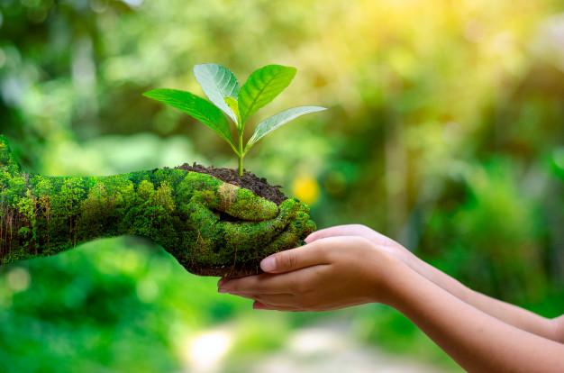 Cada vez mais as empresas vão ter que colocar nos seus KPIs todos os indicadores de sustentabilidade, diz Palmaka da SAP Brasil