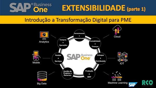 SAP B1 Extensibilidade - Transformação Digital para PME